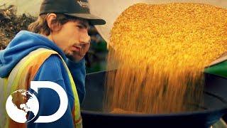Los desafíos y las recompensas de la minería | Fiebre de Oro | Discovery Latinoamérica