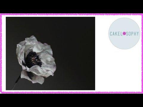 Исландский Мак: Как делать цветы из Холодного Фарфора или Сахарной Мастики