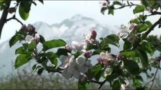 「あおもりムービーコンテスト2011」エントリー作品 http://aomori-mcon...