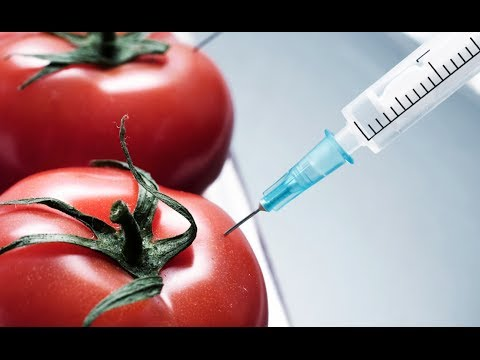 The Real Reasons To Be Afraid of GMOs (w/ Tom Philpott)
