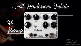 Review Tom Tone Mr. Dolemite - Scott Henderson's Tribute Presented by Alexandre Bastos