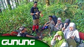RAPET BANGET !! Pendakian Gunung SALAK, Bogor ( PUNCAK SALAK 2 )