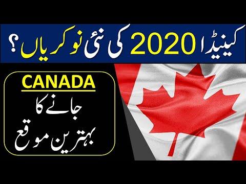 aipp-program-canada-2020-|-atlantic-immigration-pilot-program-2020-|canada-pilot-prog-|-visa-support
