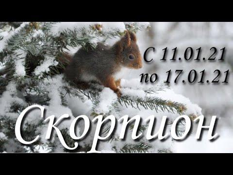 Прогноз на неделю с 11 по 17 января 2021 года для представителей знака зодиака Скорпион