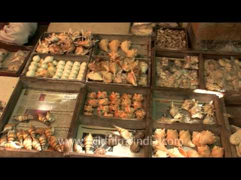 Market in Dwarka, Gujarat
