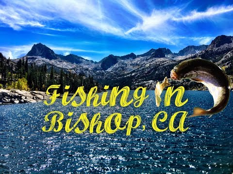 Fishing In Bishop, CA