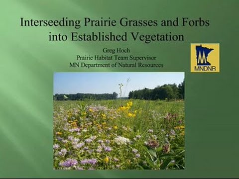 Enhancing Existing Landscapes for Monarch and Native Pollinators