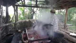 Betel Nut Processing