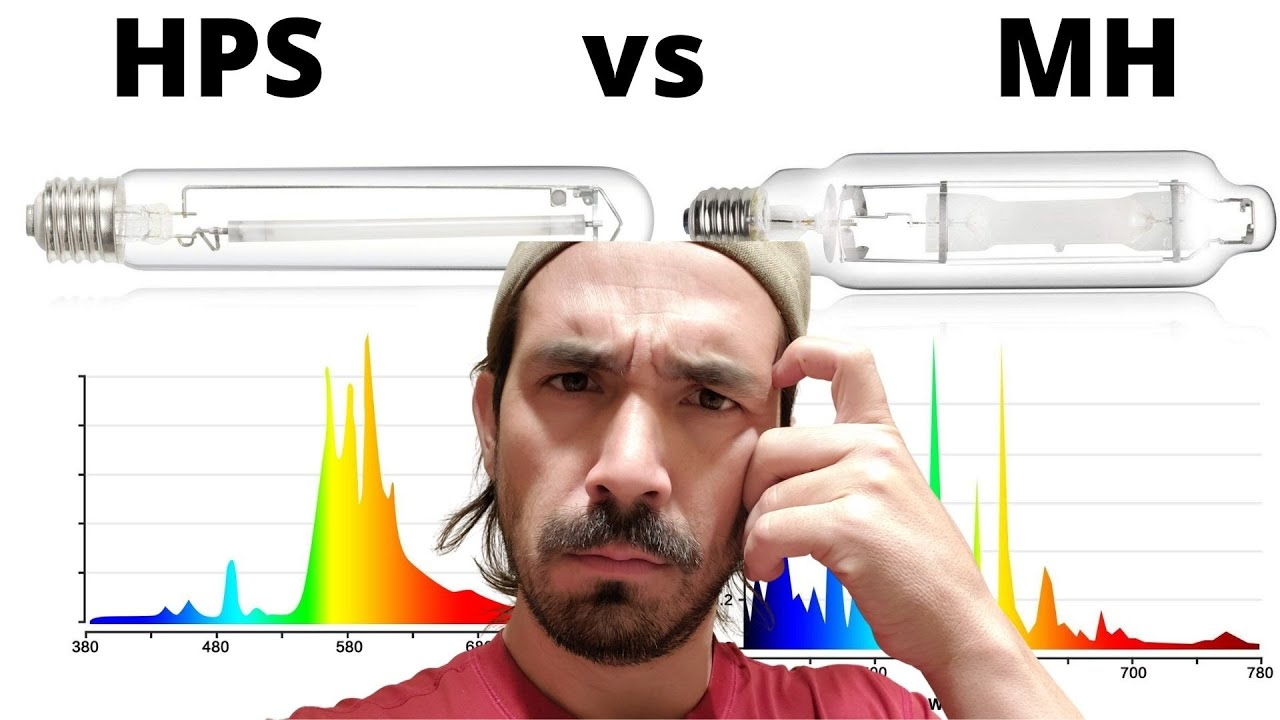 Metal Halide Lampen : High pressure sodium and metal halide: whats the difference? youtube