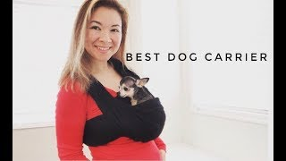 The Best Small Dog Carrier - PetTeek Dog Carrier Review SUBSCRIBE: ...