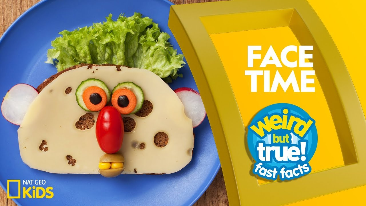 Face Time | Weird But True!—Fast Facts