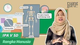 Jakarta, tvOnenews.com - Sering Nyeri Sendi? Awas Flu Tulang Atau Chikungunya   Ayo Hidup Sehat Dema.