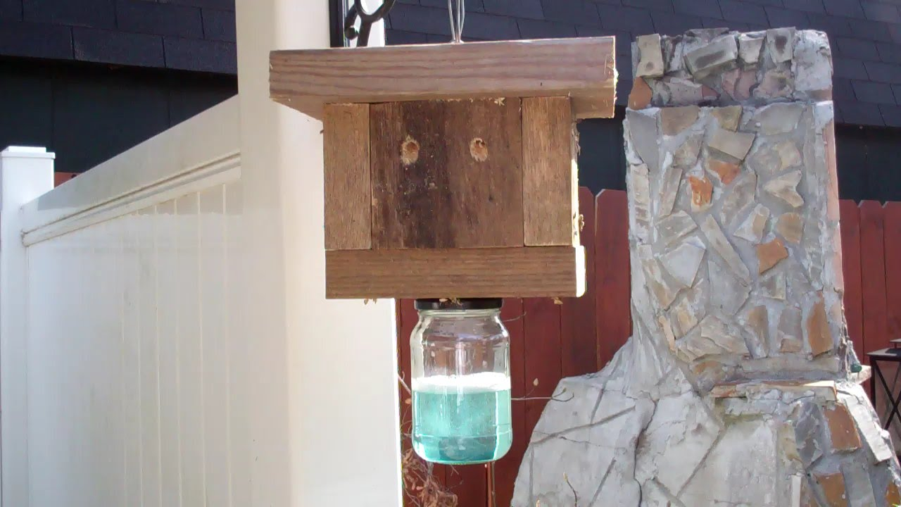 Building 2 Carpenter Bee Traps