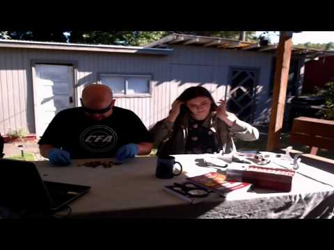 Live 2017 Solar Eclipse and Coin Roll Hunting!