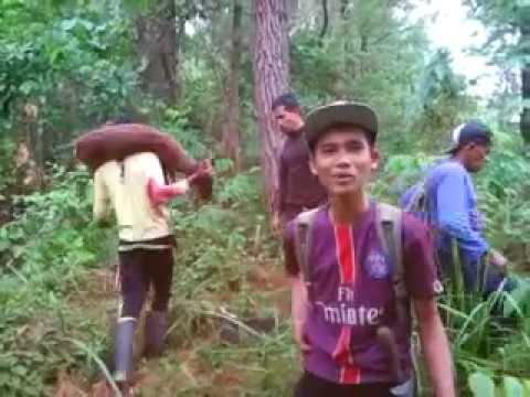 berburu hewan liar di hutan tiro sigli aceh youtube rh youtube com  berburu hewan secara liar di hutan berarti melanggar hak