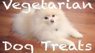 Review: Natural Vegetarian Dog Treats & Chews & Pomeranian Adventure