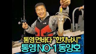 동양호 한치 대박조황 6월 7일~8일 새벽~ 마릿수 엄…