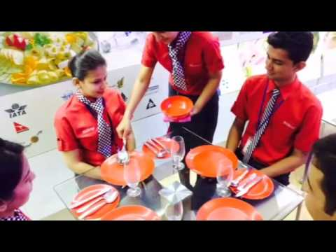 Wings Institute - Air Hostess & Hospitality Training Baroda Gujarat India