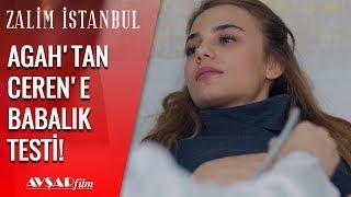 Agah İpleri Eline Aldı, Babalık Testi Yaptırıyor! - Zalim İstanbul 15. Bölüm