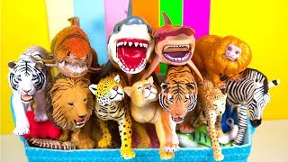 Learn Animal Names Learn Colors Animal Learning For Kids For Baby