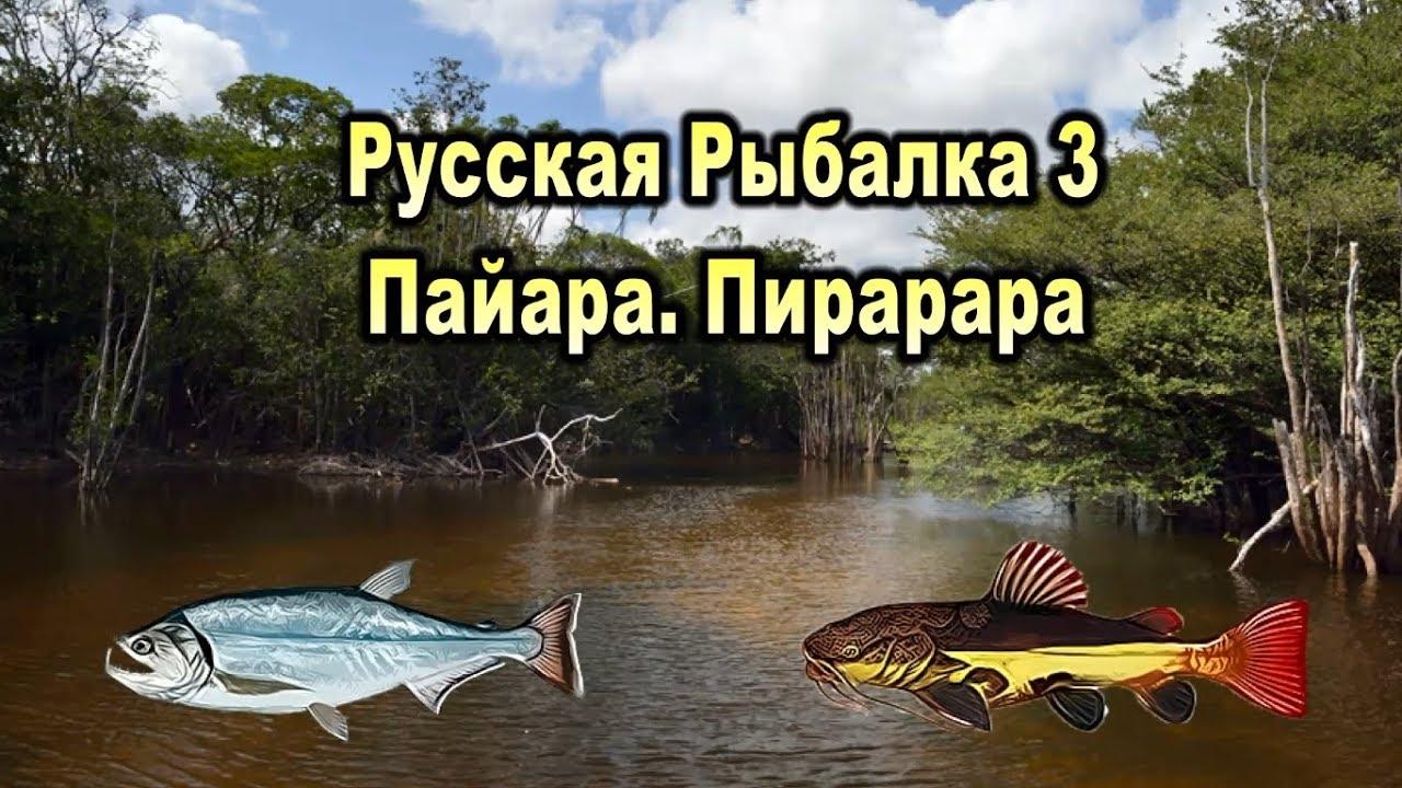 деньги в игре русская рыбалка 3