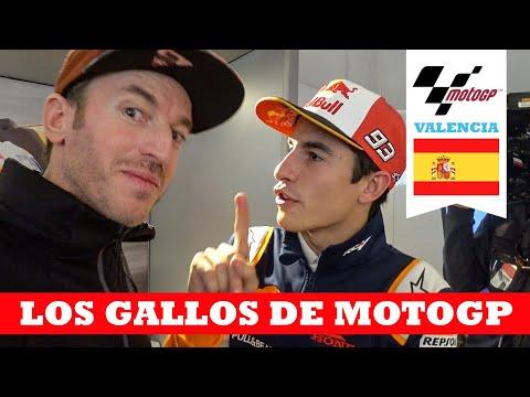 Gran Premio de Valencia | MotoGP | Ibon Zugasti
