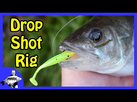 How To Tie A Drop Shot Rig For Perch