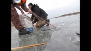 Зимняя рыбалка снимаем сети  - карп, зеркальный, сазан..