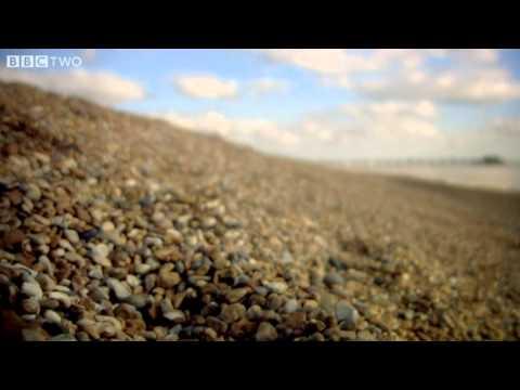 British Warriors vs Roman Invaders - A History of Celtic Britain - Episode 3 -  - BBC Two