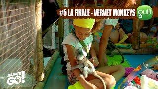 SAFARI GO S2 avec Carole Rousseau sur Gulli ! E5 - A la rencontre des Vervet Monkeys !