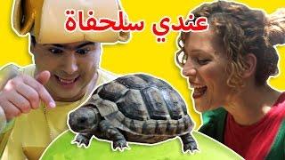 فوزي موزي وتوتي -السلحفاة في حديقة الحيوانات - Turtle Song