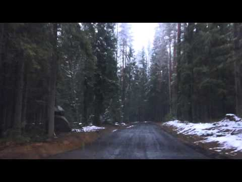 Сноуборд (вид спорта) — Википедия