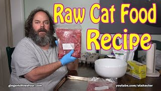 Cat Food: Healthy & Natural Raw Food Recipe