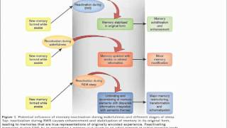 """Prof. Jacqueline London """"Therapeutical Approach for Trisomy 21 & Alzheimer disease Thumbnail"""