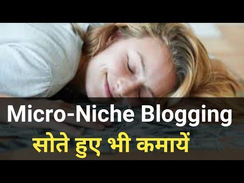 Micro Niche Blogging (Passive Income, Earn while You Sleep) [Hindi]