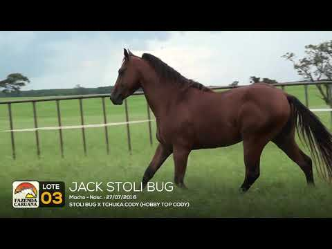 LOTE 03 - JACK STOLI BUG