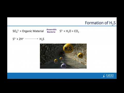 Carus Webinar: Odor Control In Wastewater (May 2019, D Skutt)