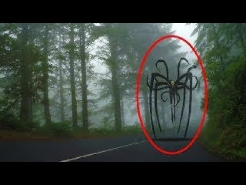 Download TOP 5 SLENDERMAN CAUGHT ON CAMERA & SPOTTED IN REAL LIFE V5