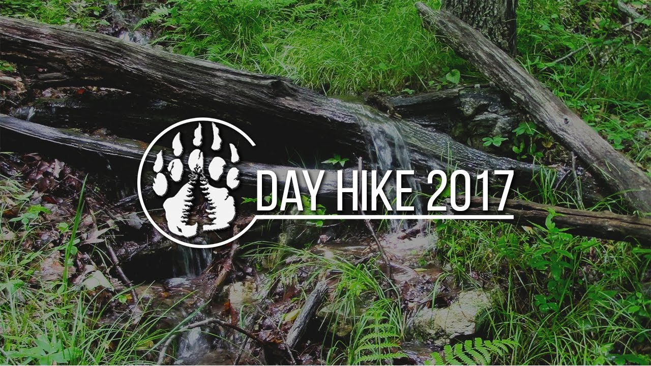 Day Hike 2017: A Wild Edible Adventure