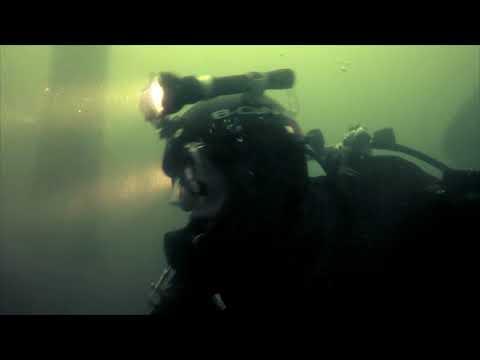 Подводный мир Синевира