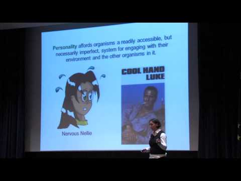 Human Evolution and Human Development Symposium 2012 - Hinde