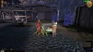 [AMD R9 390x] Dragon Age Origins - 2k (2560x1440) MAX Graphics GAMEPLAY