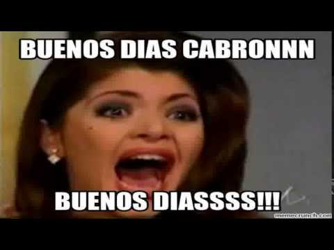 Meme Buenos Dias | Funniest Meme Buenos Dias Video - YouTube