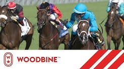 2019 Canadian Stakes (Grade III): Woodbine, September 14, 2019 - Race 7