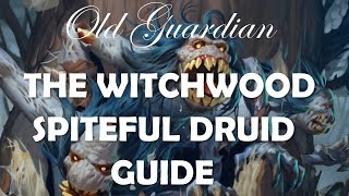 How to play Spiteful Druid (The Witchwood Hearthstone deck guide)