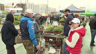 В эти выходные на Комсомольской площади Якутска состоится выставка - ярмарка огородников и садоводов