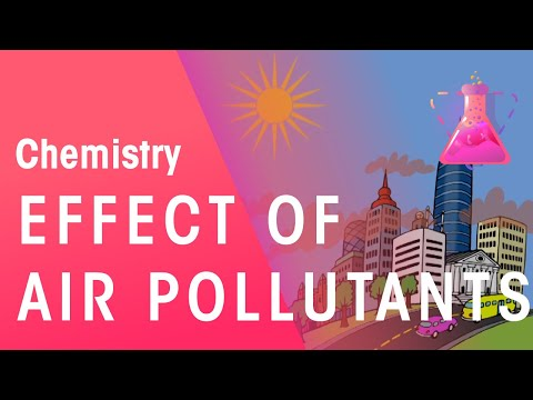 Effect of Air Pollutants on Health | Chemistry for All | The Fuse School