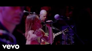 Iggy Pop - Break Into Your Heart (Live At The Royal Albert Hall)