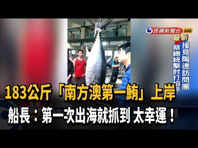 """""""南方澳第一鮪""""183公斤上岸 船長直呼太幸運-民視台語新聞"""