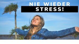 Nie wieder Stress (1/2)